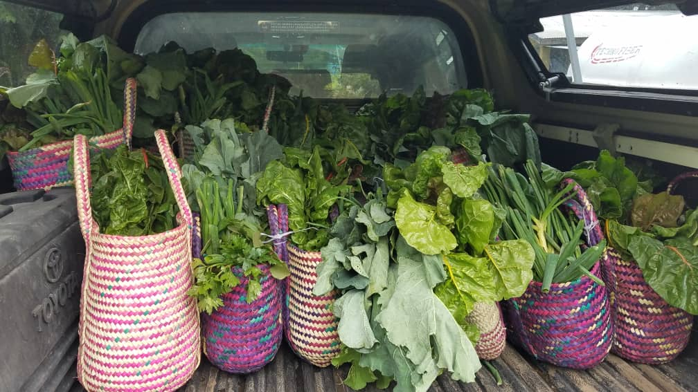 Colourful baskets of organic vegetables in a trunk ready to deliver