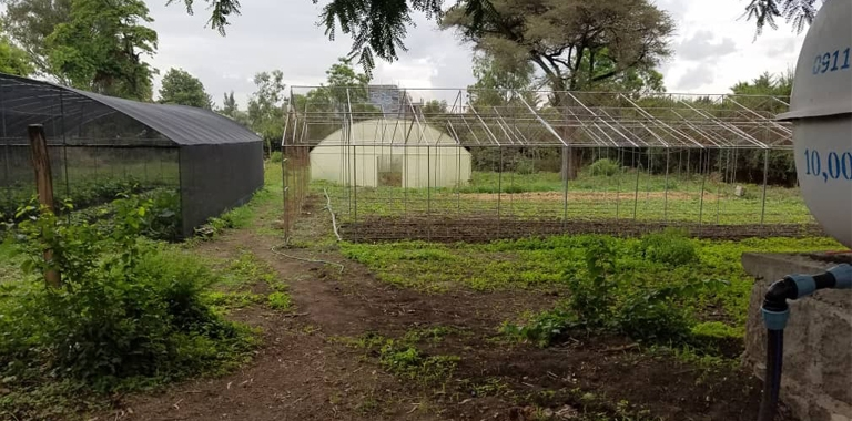 Greenhouses and a water tank