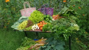 Table full of vegetables and herbs with colourful ethiopian baskets